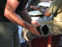 Musicians Playing Cowbell And Hand Drum In Drum Circle