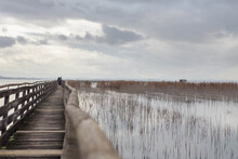 """People Walking On Wooden Pier On   Trasimeno Lake In A Cloudy Winter Day,  In The Naturalistic Oasis Of  """"La Valle""""   San Savino, Municipality Of Magione,  Umbria, Italy."""
