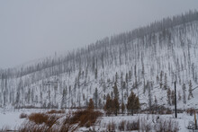 Damage From The East Troublesome Fire