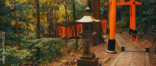 Fototapeta Fushimi Inari Shrine gate, Shinto shrine in southern Kyoto.