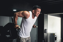 An Athletic Asian Male Doing Tricep Dips On The Dip Station. Working Out Triceps And Arms At The Gym.
