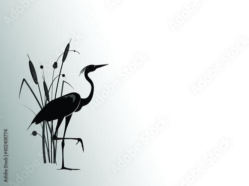Fotografía A heron  stands behind a cattail bush. Vector silhouette drawing.