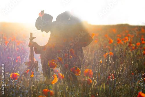 Obraz armistice day - fototapety do salonu