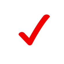Checkmark Correct Tick Icon. Confirm Approval Checklist Done Vector Icon