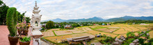 Panorama View Of Rice Field At Phuket Temple