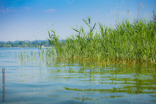 Fototapeta Lago Maggiore