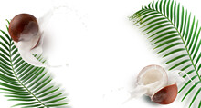 Pattern With Coconuts, Milk Splash And Palm Leaves On A White Background
