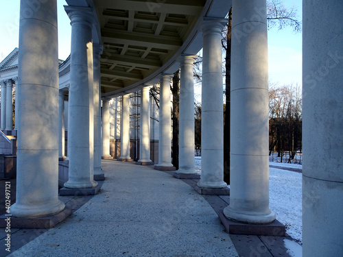 Fototapeta White colonnade in the cold winter snowy forest