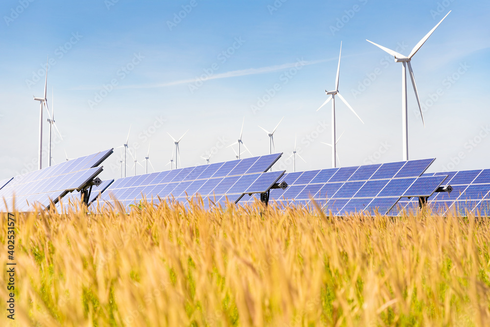 Fototapeta Solar plant with the wind farm in the summer season, hot climate causes increased power production and If strong winds will add the power generated, Alternative energy to conserve the world's energy
