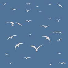 White Seagulls Or Birds On Dark Blue Background