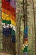 bosque de Oma, El arco iris de Naiel ,1984, Agustin Ibarrola,Kortezubi, Vizcaya,Euzkadi, Spain