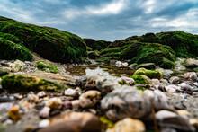 The Devon Coastline, United Kingdom