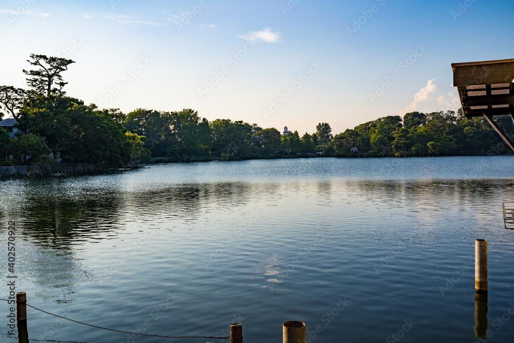 Fototapeta 釣りが盛んな穏やかな池