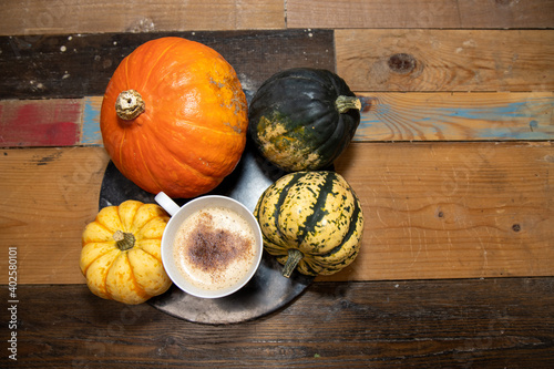 A Pumpkin Spice Latte in a white cup surrounded by pumpkins on a wooden kitchen work top