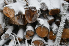 Snow On A Woodpile
