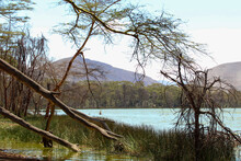 Scenic View Of Lake Elementaita Against The Background Of Sleeping Warrior Hill In Naivasha, Keny