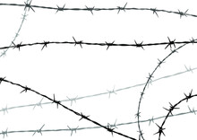 Metal Barbed Wire On White Background. Vector Illustration.