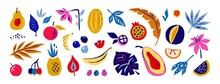 Exotic Fruits And Flowers. Doodle Tropical Plants. Colorful Mango And Banana, Juice Pineapple Or Melon. Decorative Edible Collection On White. Isolated Palm Leaves And Berries, Vector Floral Flat Set