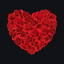 Valentines Day Red Roses Heart Filled Isolated Black Background