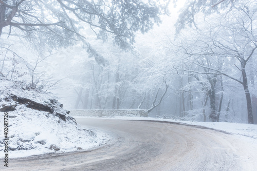 A road in the winter forest. Beautiful winter landscape with coniferous forest and mountain serpentine. Snow-covered winter fairy tale. Empty road tall spruce trees. The concept of travel in winter.