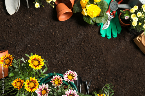 Canvastavla Flat lay composition with gardening equipment and flowers on soil, space for tex