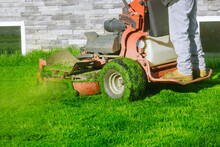 Lawn Mower Cutting The Grass Gardening Activity Own Home Yard With Lawn Mower