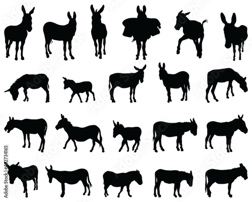 Black silhouettes of donkeys on white background Fototapete
