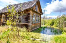 Old Wooden Dilapidated Abandoned House In A Swamp