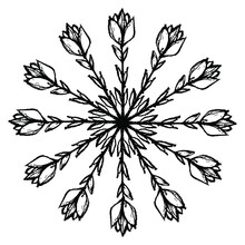 Round Floral Mandala. Star Shape With Stylized Branches Of Tulip Flower. Black Silhouette On White Background.