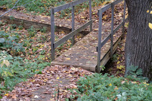 Wooden Footbridge With Railing Through A Small Ditch Near An Old Tree, Background