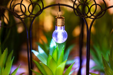 The Decorative Light In The Garden. Lost In Green Grass New Mini Powerful Flashlight. Small Lamp. New Mini Flashlight Torch Defocused Outdoor. House Interiors