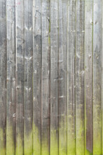 Aged Green Wooden Fence Texture. Old English Textured Vertical Wood Wall Surface Background Pattern With Mossy Planks And Nails