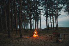 Bonfire In A Forest Camp
