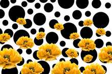 Polka Dot Background With Flowers Pattern