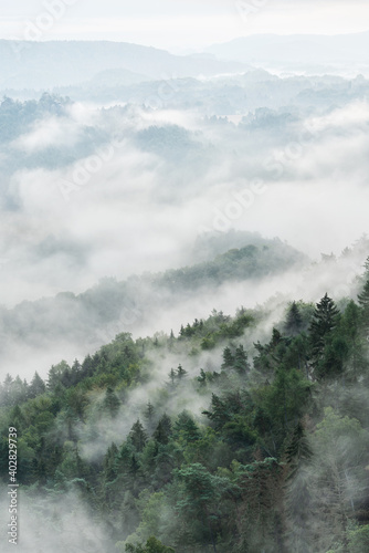 Fog Rising from Hills Covered by Forest