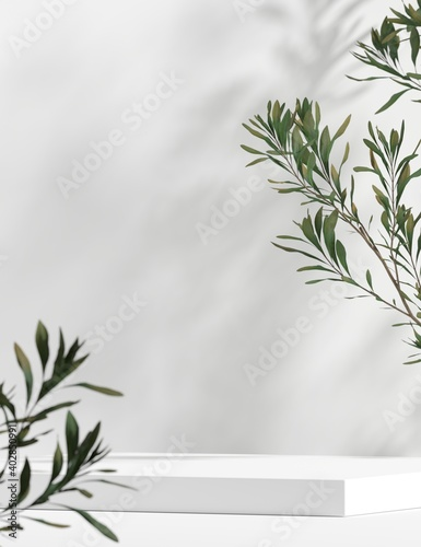 Obraz Abstract background minimal style for branding product presentation. Mock up scene with empty space. 3d rendering - fototapety do salonu