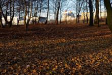 Park Kościuszki W Katowicach W Słoneczny Grudniowy Dzień. Miejskie Budynki Prześwitują Przez Drzewa