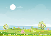 Panorama View Of Spring Village,green Meadow On Hills,blue Sky And Sun, Vector Cartoon Spring Or Summer Landscape, Panoramic Countryside Landscape Mountains,cheery Blossom And Wild Flowers Field