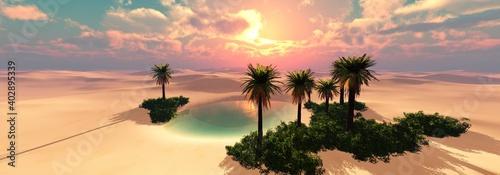 Fototapeta Desert oasis at sunset, beautiful sunset in the sand desert, sunset in the dunes