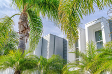 Palm Trees And Modern Home In Sunny Huntington Beach California With Cloudy Sky