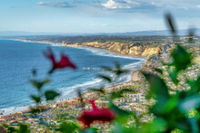 Blurry Flower Against Aerial View Of Sea And Land At San Diego California Coast