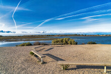 Wood Benches With Panoramic View Of Bolsa Chica Nature Reserve Huntington Beach