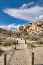 Pathway Of Nature Trail In The Desert Of California At Joshua Tree National Park