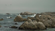 Birds Flying Over Overcast Rocky Beach Dolly Over Waves, Monterey California, Rock Formations