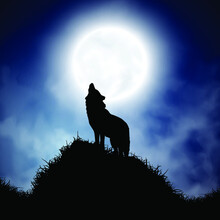 Silhouette Wolf On Full Moon Background