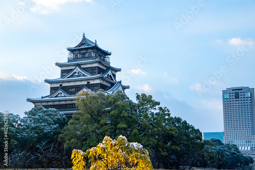 Fotografie, Obraz 冬の広島城