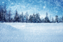 Snowy Forest Background. Blurred Background. Snow In The Foreground In Focus.