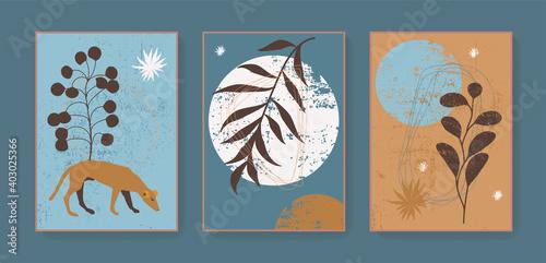 Fotografie, Obraz Boho triptych wall decor prints