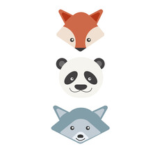 Animals. Fox Is Panda Is Raccoon. Flat Design. Vector