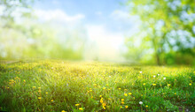 Beautiful Meadow Field With Fresh Grass And Yellow Dandelion Flowers In Nature Against A Blurry Blue Sky With Clouds. Summer Spring Perfect Natural Landscape.